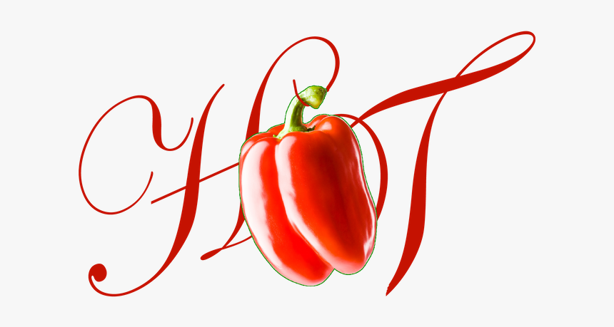 Hot Girl Tee - Plum Tomato, HD Png Download, Free Download