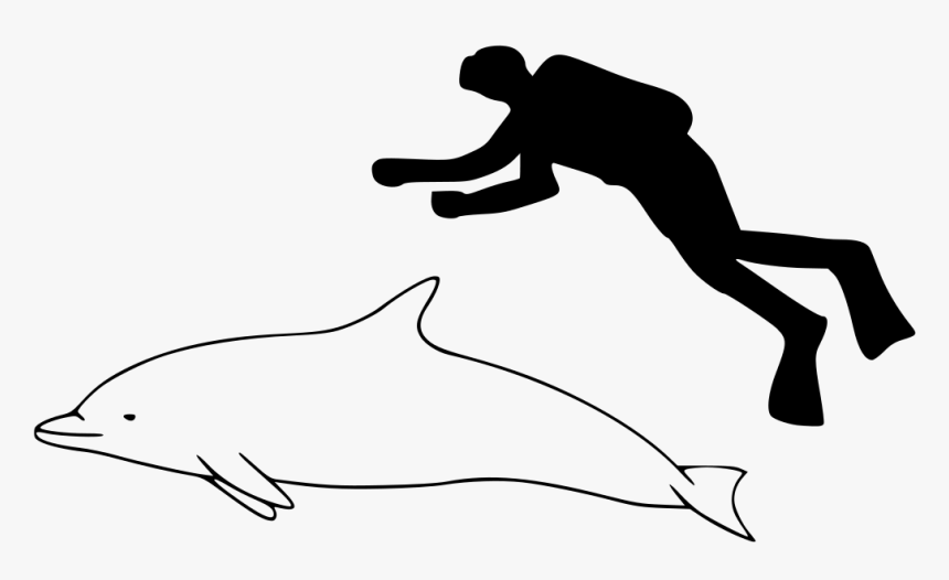 Pantropical Spotted Dolphin Size, HD Png Download, Free Download