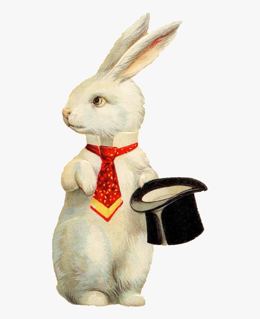 Rabbit Hat Png Background Image - Vintage Funny Easter Bunny, Transparent Png, Free Download