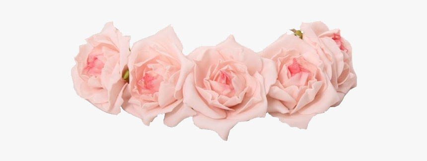 Coroa For Free - Pink Flower Crown Png, Transparent Png, Free Download