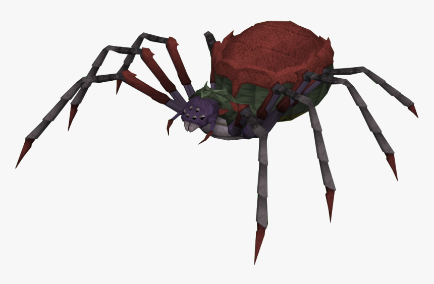 Spiderqueen - Runescape Giant Spider, HD Png Download, Free Download