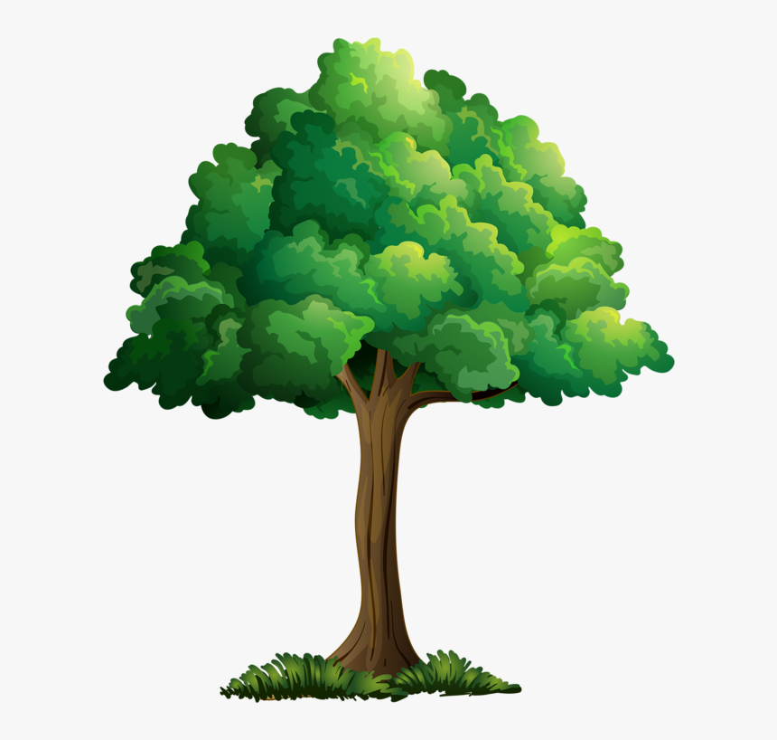 Transparent Plant Cartoon Png Realistic Tree Cartoon Drawing Png Download Kindpng Tree christmas for holiday, green pine with garland illustration. realistic tree cartoon drawing png