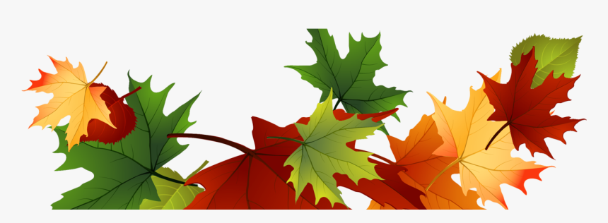 Autumn Leaves Clipart Transparent Background, HD Png Download, Free Download