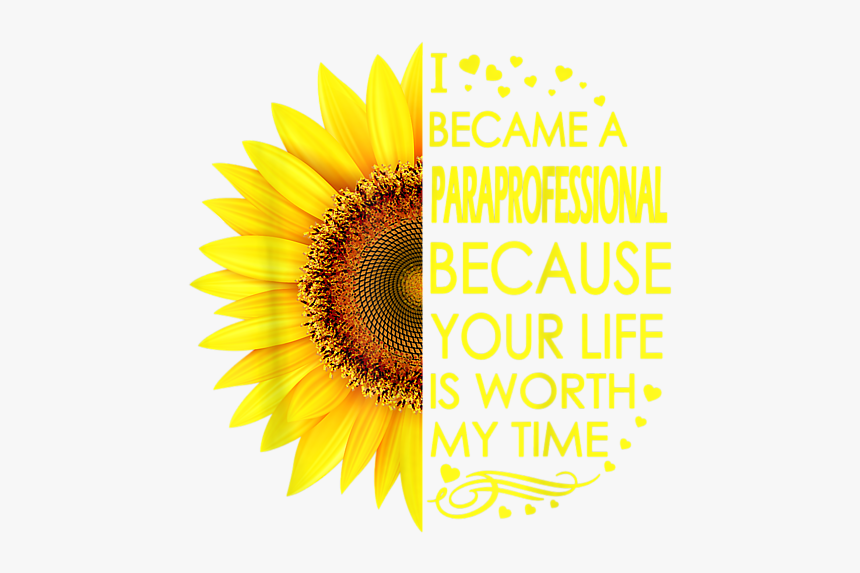 Sunflower, HD Png Download, Free Download