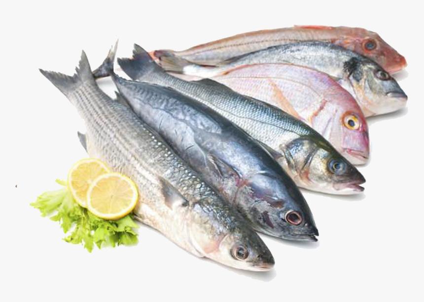 Sea Fish Names In Tamil, HD Png Download, Free Download
