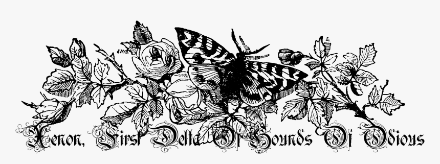 Vintage Flower Png Black And White - Butterfly And Bee Border, Transparent Png, Free Download
