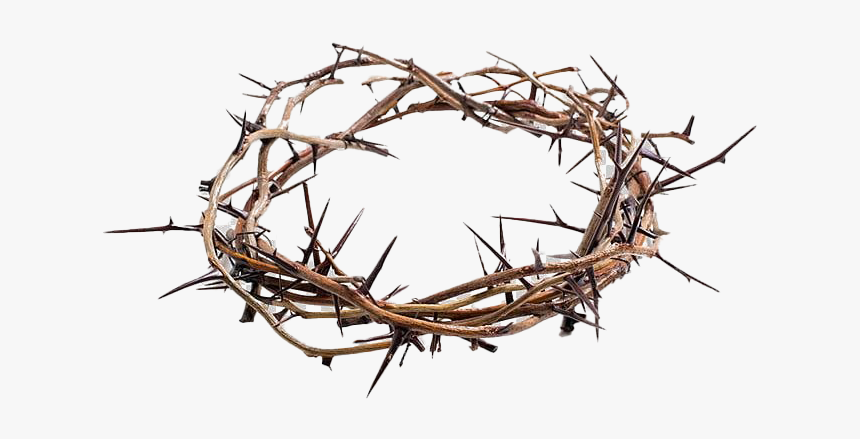 Thorns Crown Png Picture - Jesus Crown Of Thorns Png, Transparent Png, Free Download