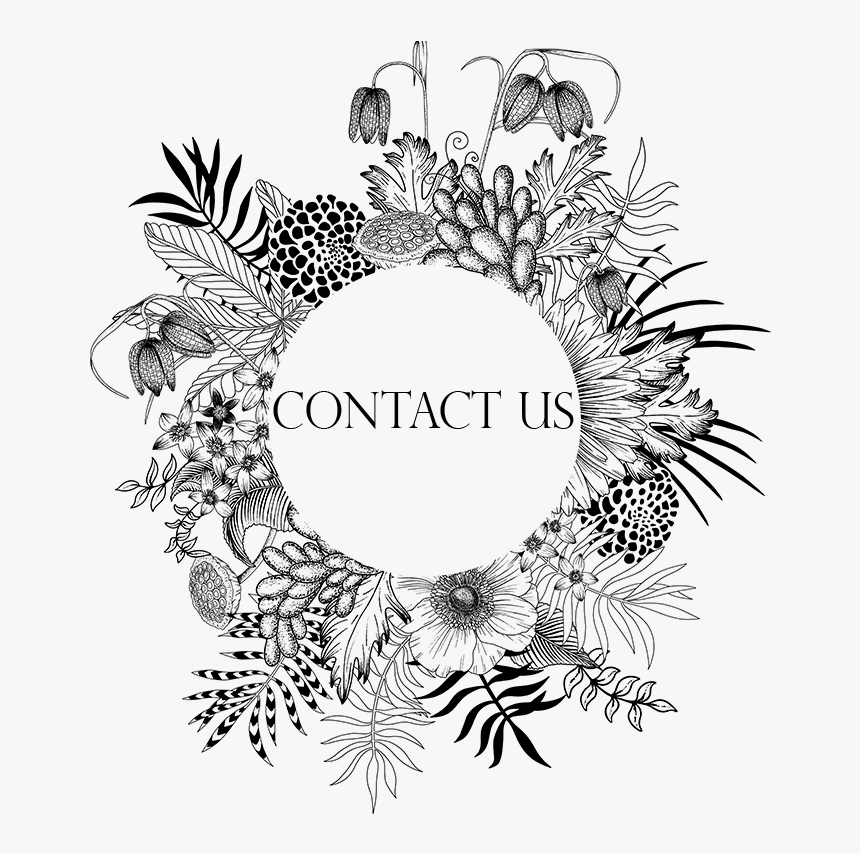 Contact Us - Circle, HD Png Download, Free Download