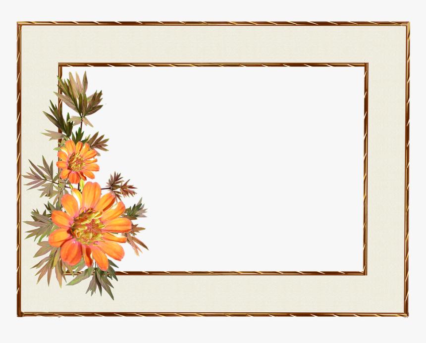 Frame, Floral, Gold Border, Decoration - Hd Decorative Border Design, HD Png Download, Free Download