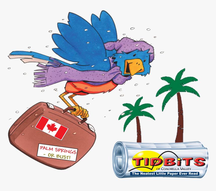 Snowbird Cartoon Drawing Free Frame Clipart - Snowbird Free Clipart, HD Png Download, Free Download