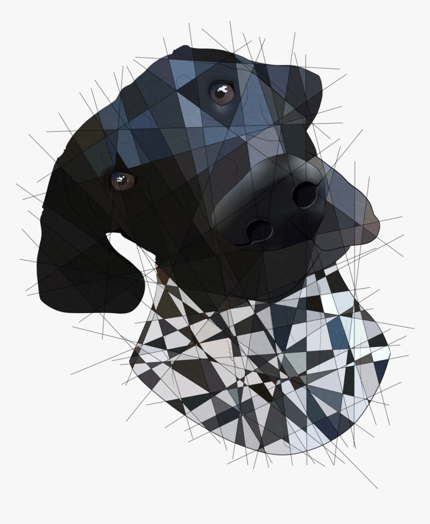A Dog I Drew For My Aunt  redbubble society6 - Illustration, HD Png Download, Free Download