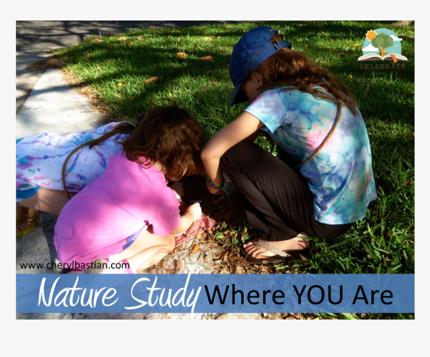 Naturestudy5, HD Png Download, Free Download