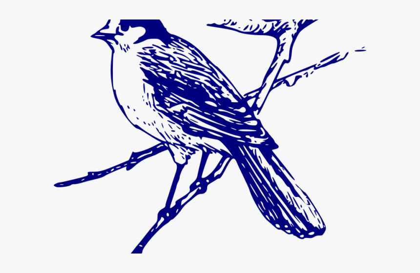 Blue Jay Clipart Vector - Transparent Background Bluebird Clipart, HD Png Download, Free Download
