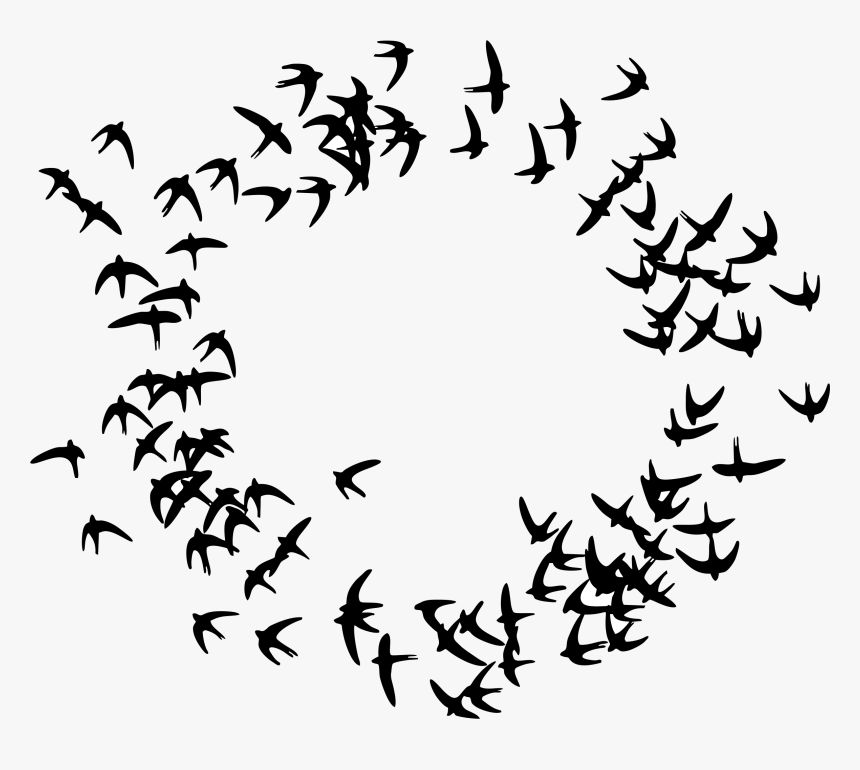Birds Flying In A Circle - Particle Swarm Optimization Icon, HD Png Download, Free Download