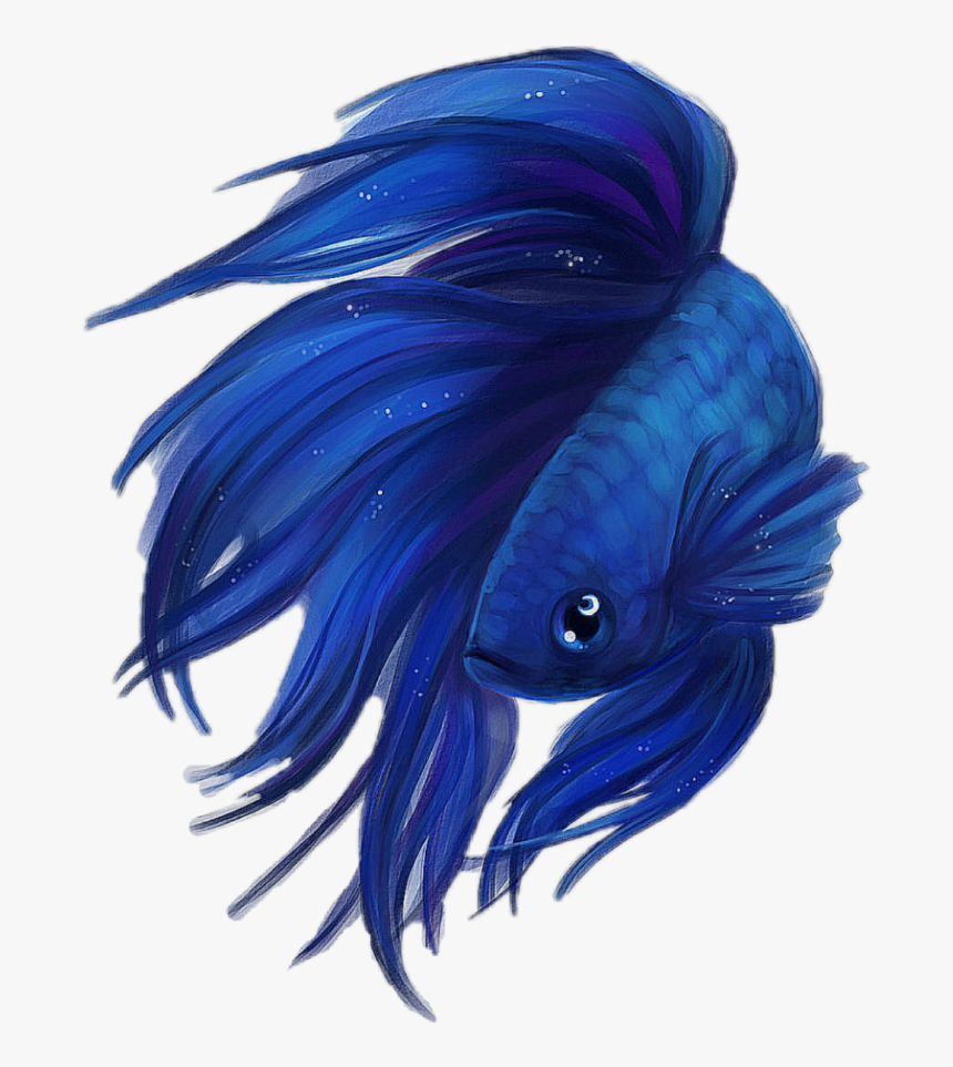 Blue Betta Fish Drawing , Png Download - Betta Fish Drawing Png, Transparent Png, Free Download