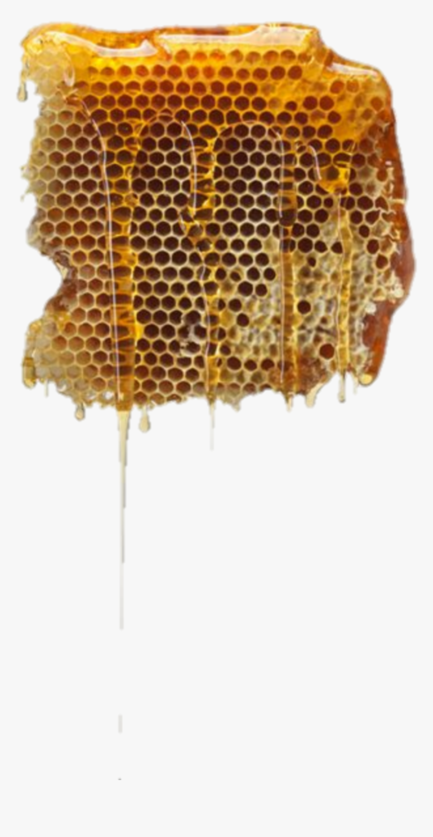 #honey #sweet #beehive - Beehive Png, Transparent Png, Free Download