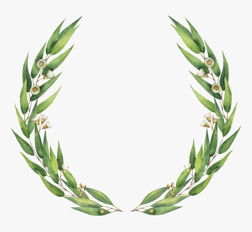 Simple Guirnalda Png De Hoja De Sauce - Eucalyptus Clipart Wreath, Transparent Png, Free Download