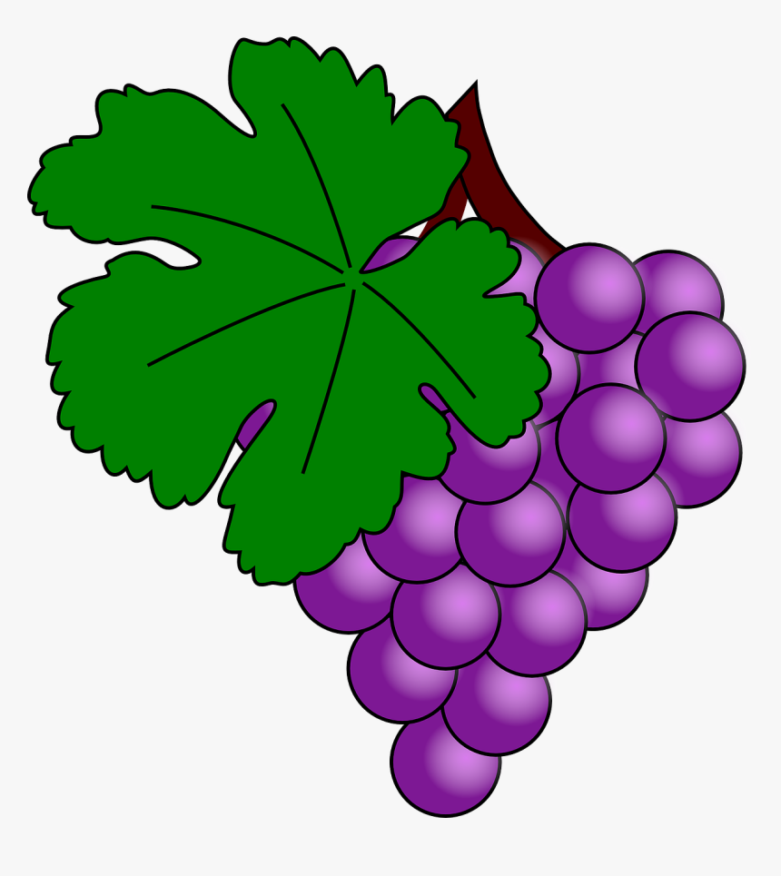 Clip Art Grape, HD Png Download, Free Download