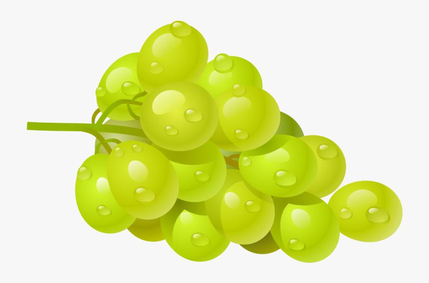Grape Vine Border Png, Transparent Png, Free Download