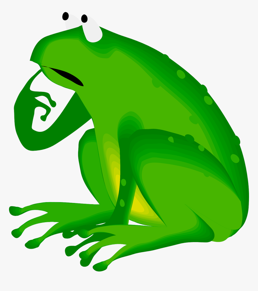 Grass,toad,vertebrate - Thinking Frog Clipart, HD Png Download, Free Download