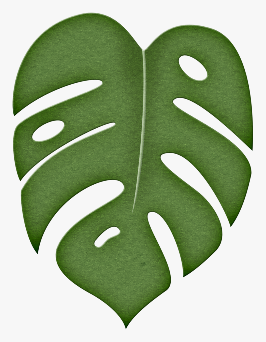 Leaves Clipart Green Tropical Clipart Jungle Leaf Hd Png Download Kindpng