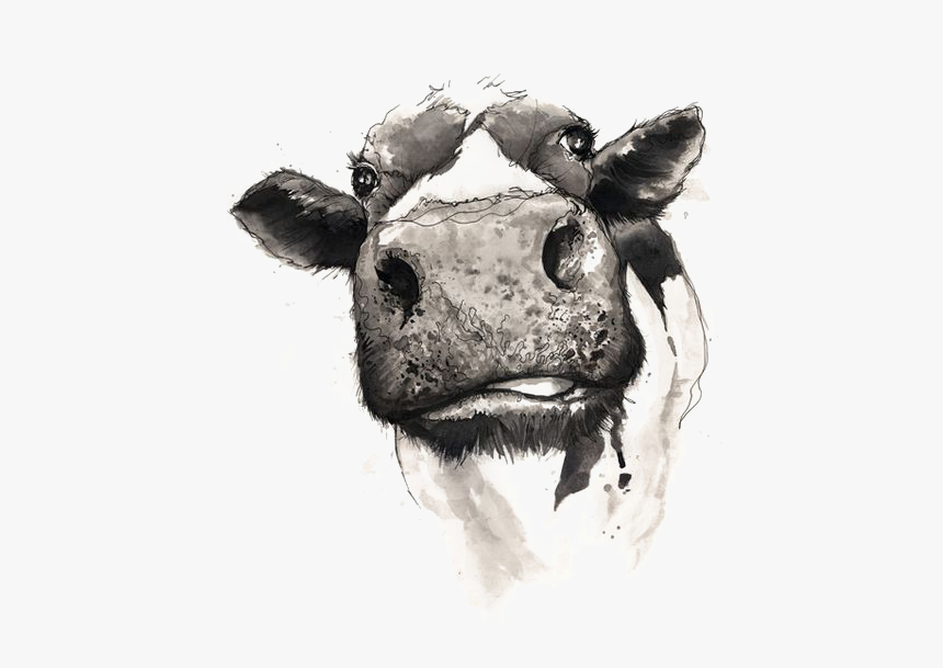 Watercolor Painting Drawing Cow Cattle Download Free - Svg Not Today Heifer, HD Png Download, Free Download
