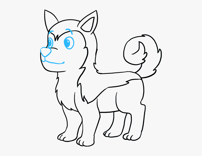 How To Draw Husky - Easy How To Draw A Husky, HD Png Download, Free Download