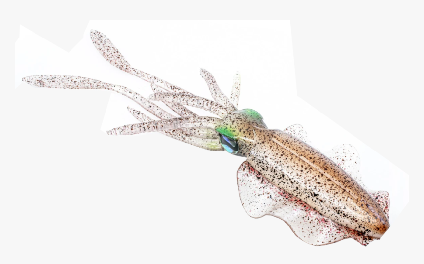 """Chasebaits The Ultimate Squid 150/200/300 Soft Lure""""   - Chasebaits The Ultimate Squid, HD Png Download, Free Download"""