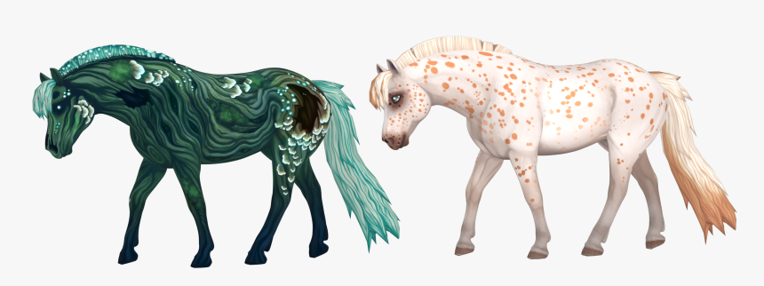 Fjord Horse Sso, HD Png Download, Free Download