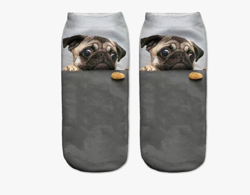 Pug Socks, HD Png Download, Free Download
