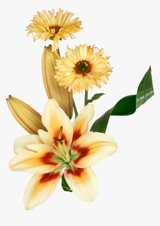 Flores Png Para Photoscape - Fleurs Joyeux Anniversaire Gif, Transparent Png, Free Download