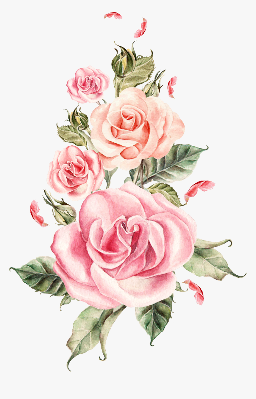 Pink Flower Bouquet Rose Roses Wedding Hand-painted - Pink Rose Transparent Background, HD Png Download, Free Download