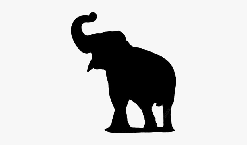 Elephant Png Images Pics Elephant Trunk Up Png Transparent Png Kindpng If you like, you can download pictures in icon format or directly. elephant trunk up png transparent png