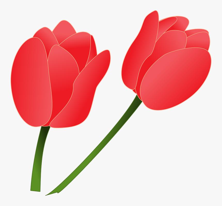 Pink Tulip Flower Clip Art
