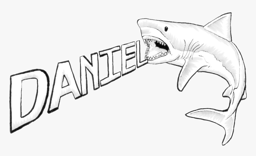 Great White Shark Drawing - Drawings Of A Great White, HD Png Download, Free Download