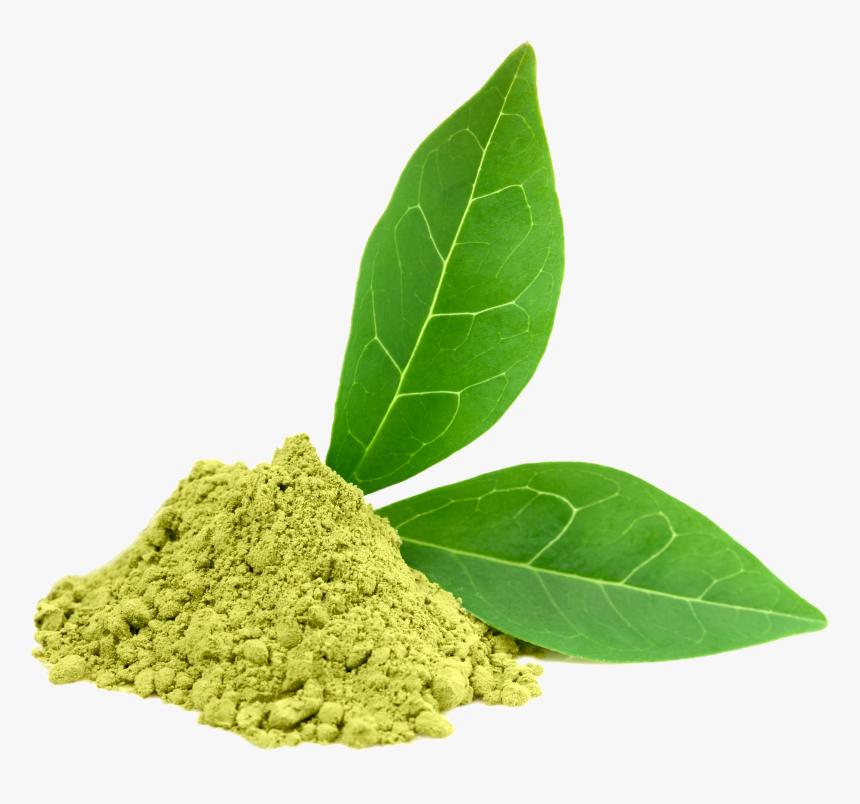 Green Tea Png, Transparent Png, Free Download
