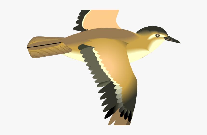 Sea Bird Clipart 3 Bird Flying Bird Clip Art Hd Png Download Kindpng