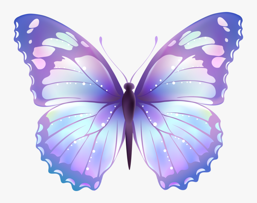 Butterflies Png, Transparent Png, Free Download