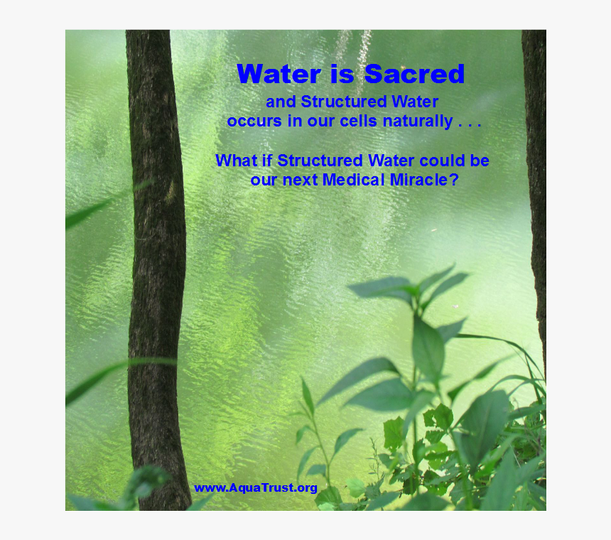 20160414 Water Is Sacred Meme - Book Cover, HD Png Download, Free Download