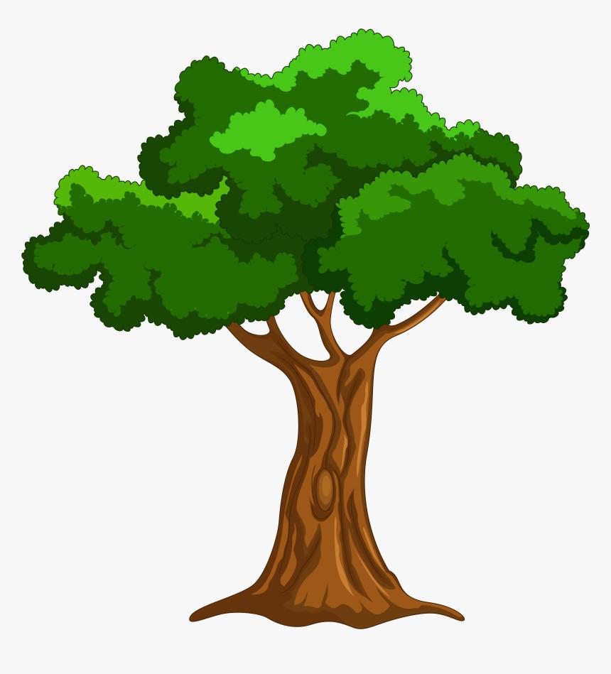 Cartoon Tree Png Clip Art Tree Clipart Transparent Png Kindpng