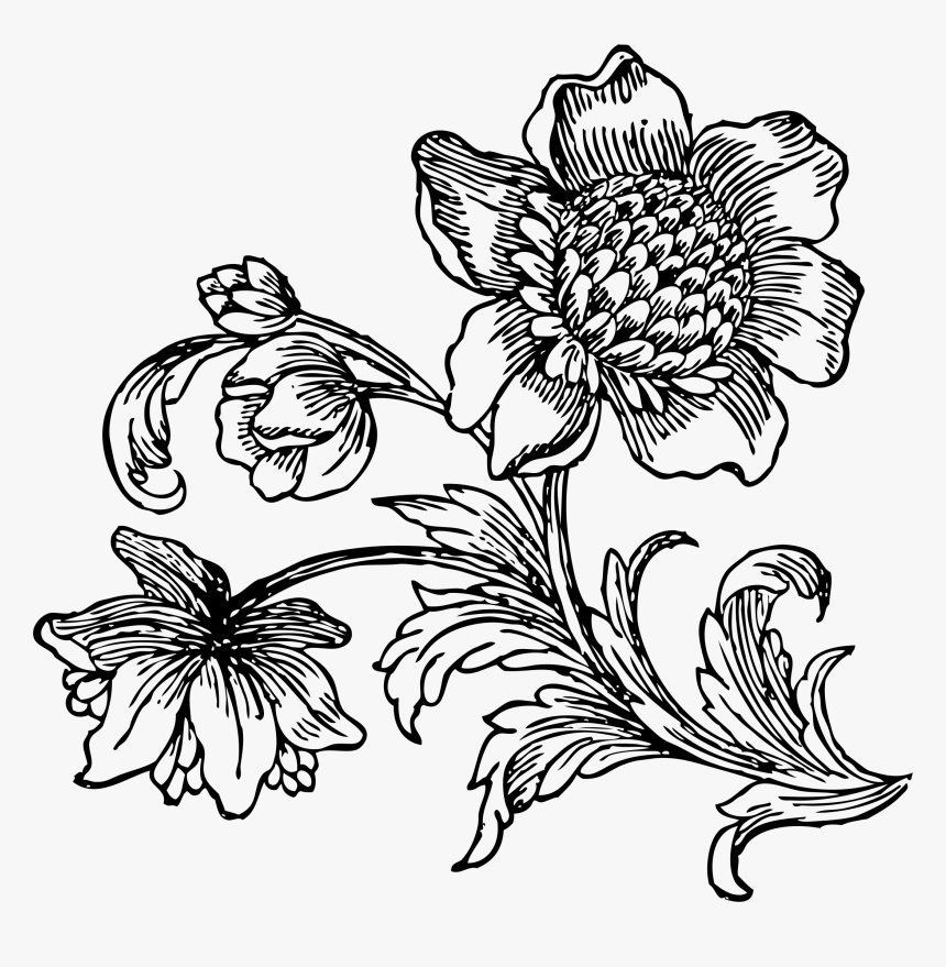 Big At Getdrawings Black And White Flower Drawing Png Transparent Png Kindpng,Boneless Ribs In Oven