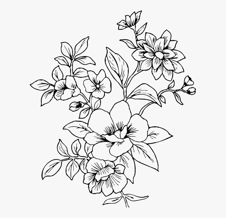 Flower Line Drawing Png Transparent Png Kindpng