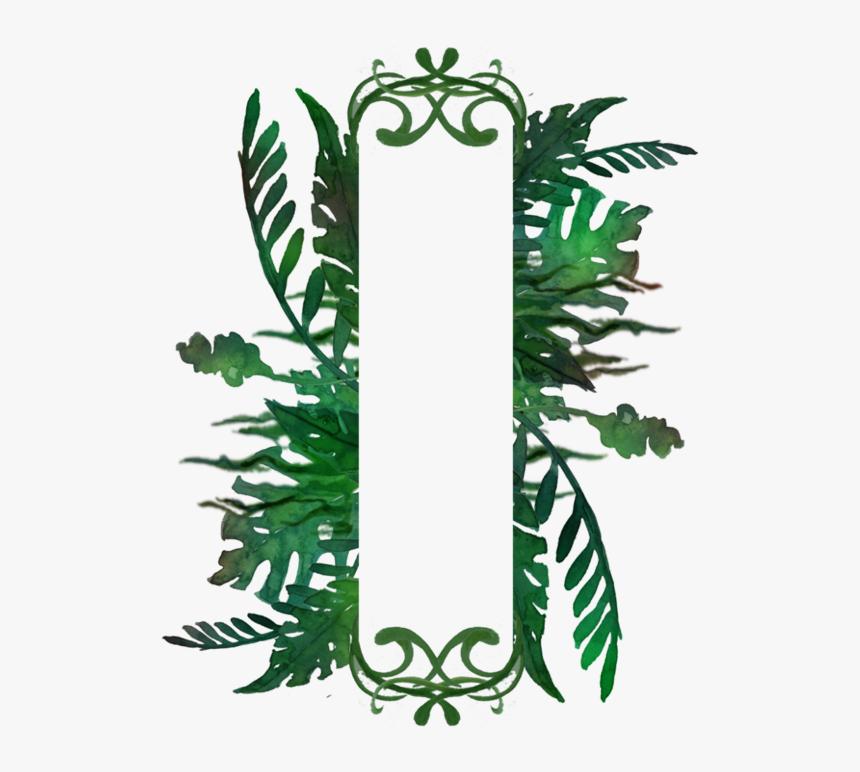 Transparent Jungle Frame Png - Illustration, Png Download, Free Download
