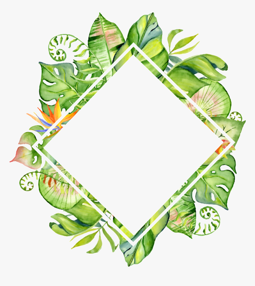 Download Hand Painted Rhomboid - Tropical Leaf Frame Png, Transparent Png, Free Download