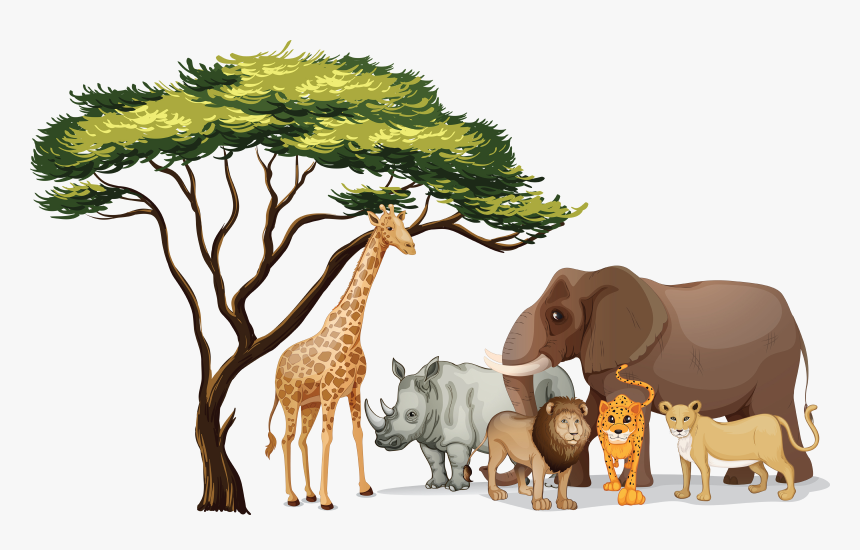 Pictures Of Jungle Animals Png - African Animals Clip Art, Transparent Png, Free Download