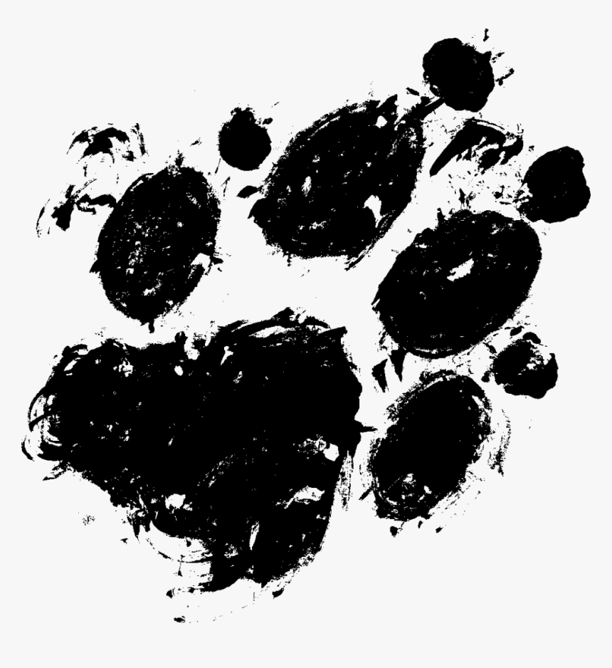 Transparent Real Paw Print, HD Png Download, Free Download
