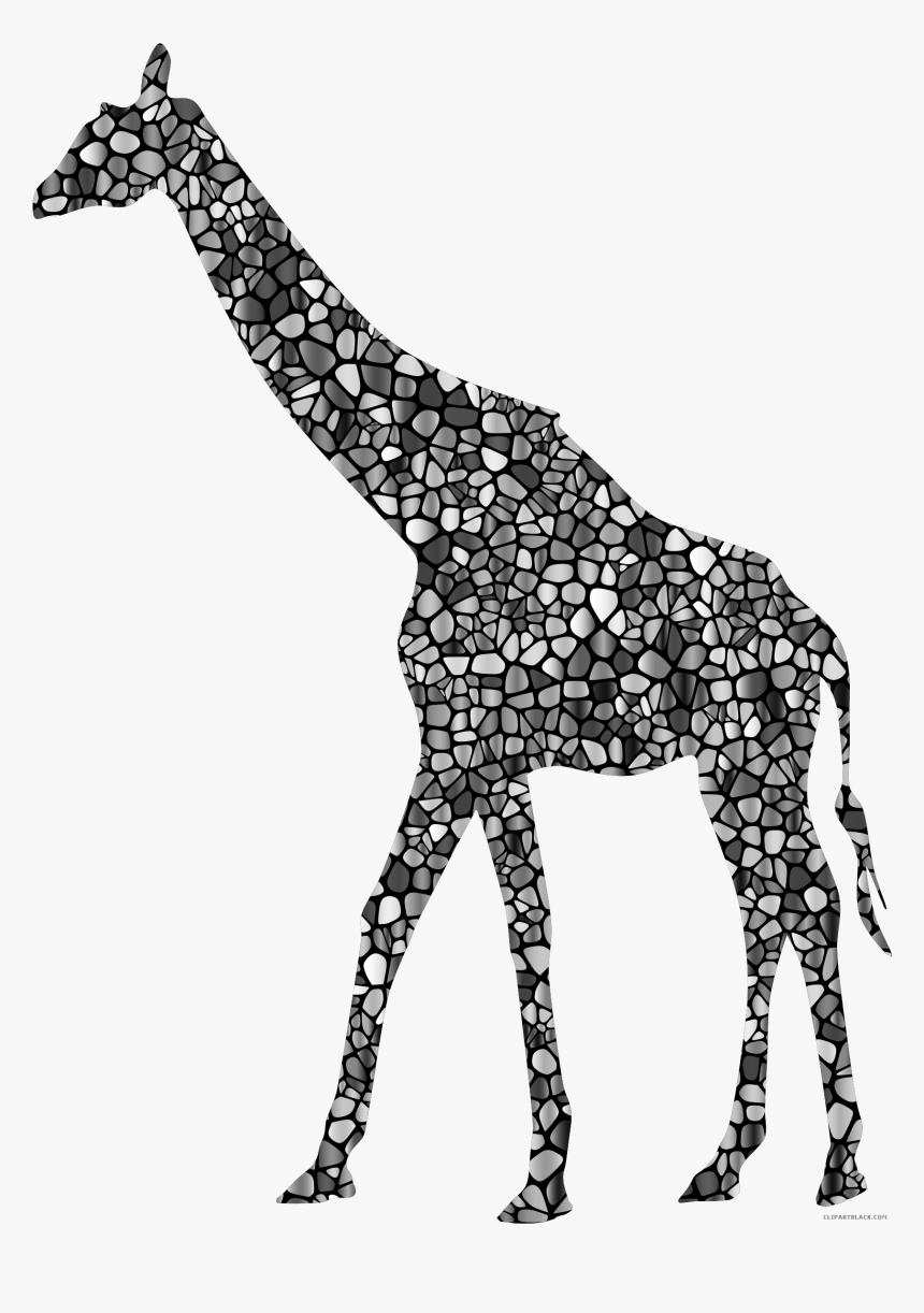 Silhouette Animal Free Black - Colored Animal Silhouette Transparent, HD Png Download, Free Download
