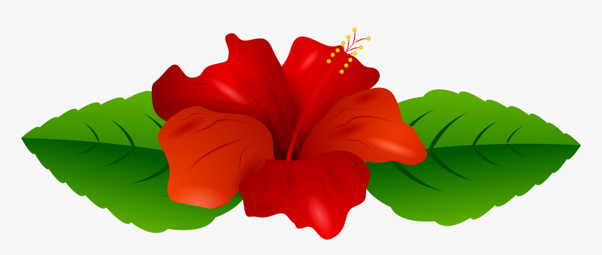 Red Hibiscus Transparent Png Clip Art Image Transparent Background Red Hawaiian Flower Clipart Png Download Kindpng