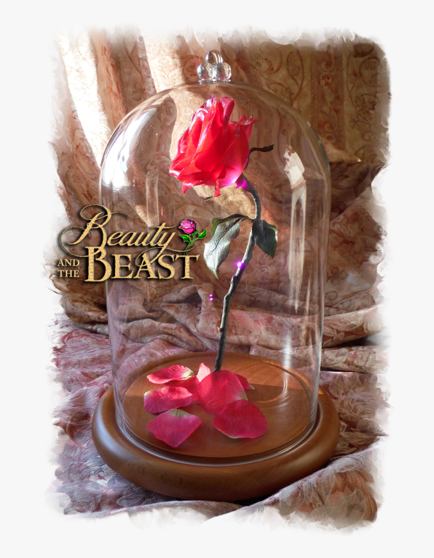 Free Beauty And The Beast Rose In Glass - Artificial Flower, HD Png Download, Free Download