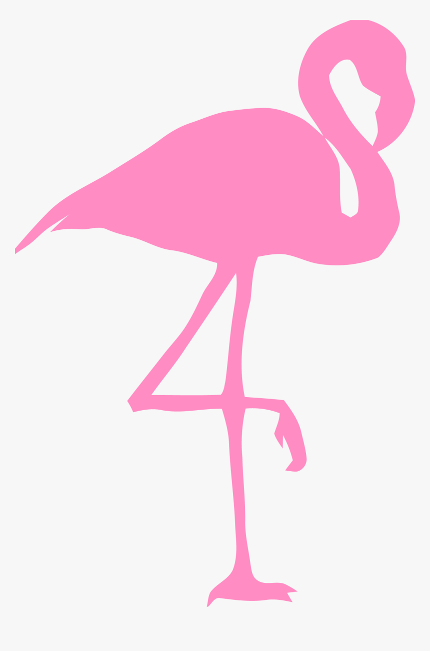 Flamingo, Bird, Silhouette, Pink, Nature, Wildlife, - Cartoon Pink Flamingos, HD Png Download, Free Download